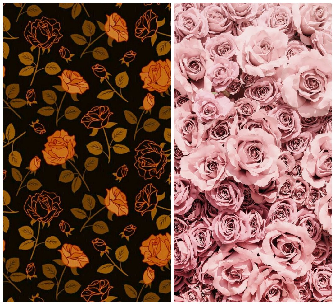 14 Rose Phone Wallpaper You Will Enjoy